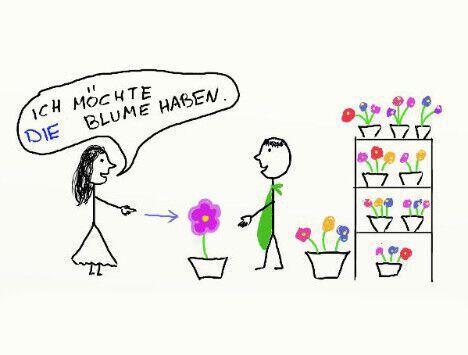 Femininum was bedeutet Gendergerechte Sprache: